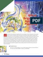 BCL-xL Regulates Synaptic Plasticity