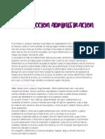 Introduccion Administracion resumen