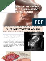7. Sufrimiento fetal y bienestar fetal (Dr Otero).pdf