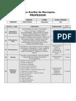CRONOGRAMA PROFESSOR.docx
