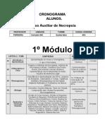 CRONOGRAMA  aluno-necropsia -Salvador-BH.docx