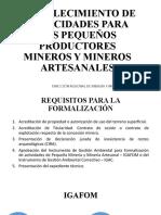 Fortalecimiento de Capacidades para los PPM y MA.pptx