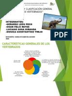 Evolución y clasificación general de los invertebrados