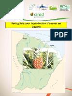 petitguidepourlaproductiond27ananasenguyaneii (1).pdf