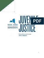 Senate Dems Juvenile Justice Report