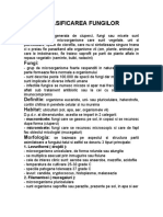 Clasificare fungi.doc