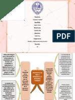 MapaMental-3.pdf