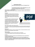 5 ANEXO  TÉCNICA DIDACTICA ACTIVA - Organizador Gráfico