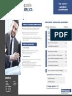 Maestria-gestion-publica