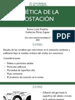 Cinética de la tostación.pdf
