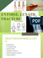 curs 8 fracturi,entorse,luxatii (1)