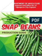 Snap-Beans-Production-Guide