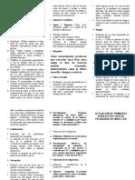 MORDEDURAS DE INSECTOS.doc