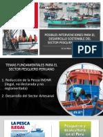 Posibles-inwerwetervenciones-para-el-desarrollo-sostenible-del-sector-pesquewerwerwero-artesanal