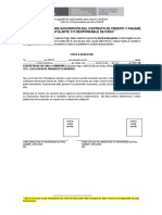 INSTRUCCIONES_DDJJ_POSTULANTE
