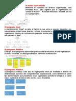 Organigrama funcional con mando especializado