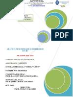 Grafic sedinte CEAC 2019 - 2020.pdf