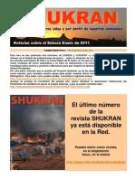 Noticias Sahara enero 2011