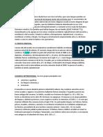 5. SOC HIDRAULICA - MEZOPOTAMIA - LENGUAS SEMITICAS y HAMITO-SEMÍTICAS