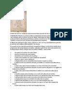 20. HOMBRE DE VITRUVIO
