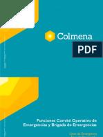 PRESENTACION CAPACITACION FUNCIONES DEL COE Y BRIGADA 22 DE OCT 2020