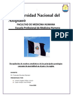 Recopilación de cuadros estadísticos de las principales patologías causante de mortalidad en el país y la región