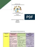 CUADRO ESTUDIO DE CASO (2)