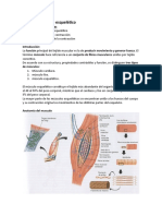 Fisiología musculo esquelético y reflejos.docx