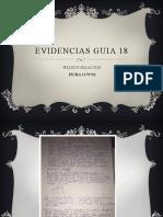 EVIDENCIAS GUIA