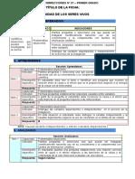 RP-CTA1-K01 - Manual de corrección Ficha N° 1.docx