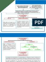 ORGANIZACION DEL MANTENIMIENTO - LEONARDO ARELLANO BRYAN FREDDY.pdf
