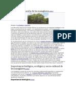 Sucesión y zonación de los manglares