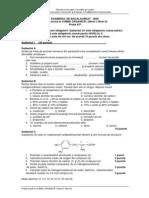 e_f_chimie_organica_i_niv_i_niv_ii_si_002