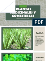 Plantas medicinales y comestibles