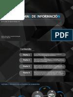 Grafica-Sistemas de Informacion