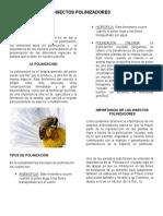 insectos poliNIZADOR