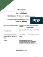 Perfil Proyecto Arroz Enero. 2009