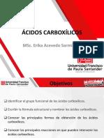 ÁCIDOS CARBOXÍLICOS.pdf