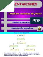 fermentaciones_2bach