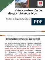CLASE FACT RIESGO BIOMECANICO.pptx