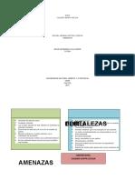 DOFA- unidad 3 fase 2