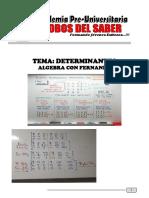 DETERMINANTES doc.pdf