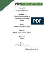 RAEnriquez_Foro_Metabolismo del nitrógeno y lípidos en los vegetales