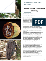 Moniliophthora roreri.pdf
