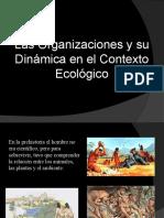 Las Organizaciones y Su Dinamica en El Contexto Ecologico