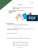 Practica 1_Guía-convertido (2).docx