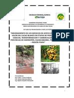 CACAO PIURA (1).pdf