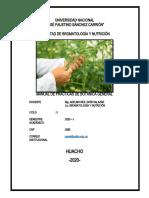 Practica de Laboratorio N°11.docx