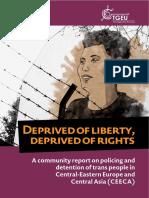 Prison_Report_2018_EN.pdf