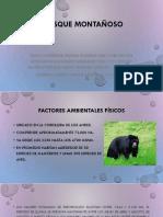 CORREDOR BIOLÓGICO GUACHAROS PURACE (SENDERO REPRESENTATIVO DEL